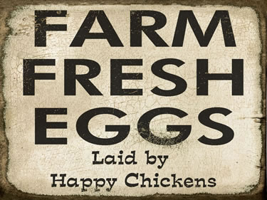 Farm Fresh Eggs Laid By Happy Chickens