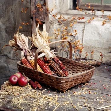 Indian Corn Basket