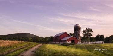 Bellvale Farm