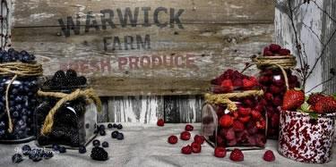 Warwick Berries