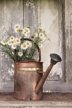 The Friendliest Flowers