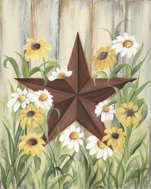 Barn Star Daisies