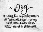 Dog- A Hairy Four Legged