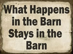 What Happens In The Barn Sta