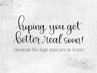 The Dogs Miss You At Home