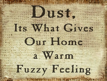 Dust, It's What Gives Our Home A Warm Fuzzy Feeling