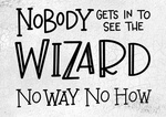 Nobody Gets In To See The Wizard