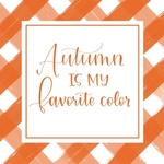 Orange Plaid Favorite Color