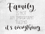 Family is not an important thing its everything